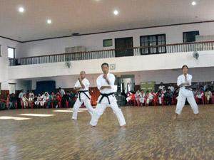nepal2_karate015