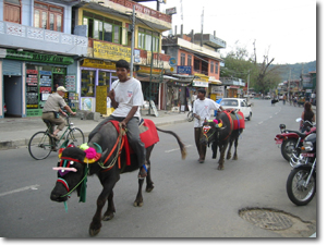 nepal_town02